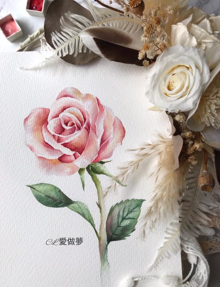 rose_flower_paint