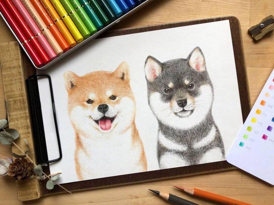 Color pencil course
